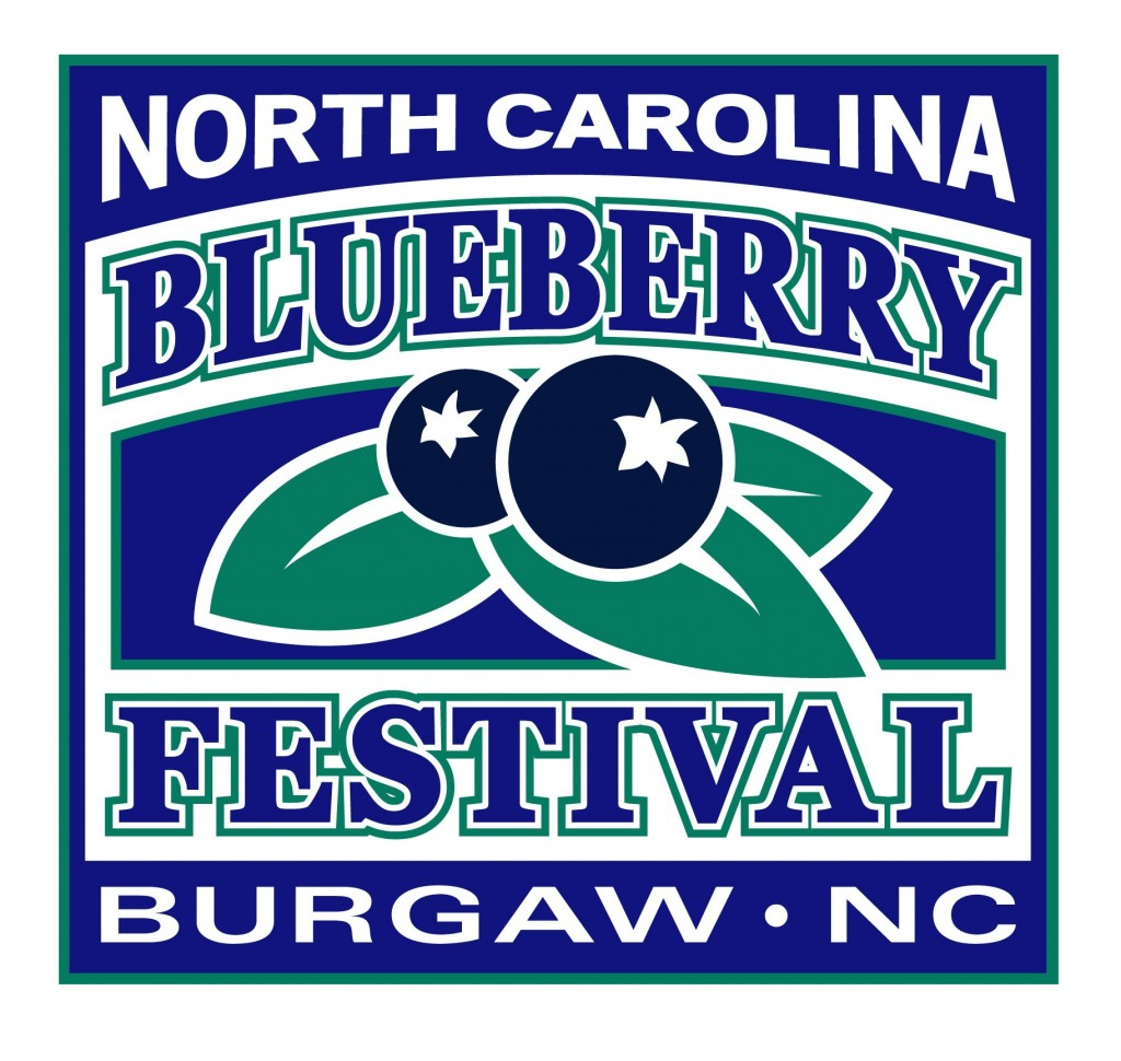 nc blueberry festival association essay scholarship