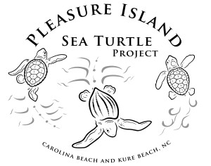 PISTP Sea Turtle logo