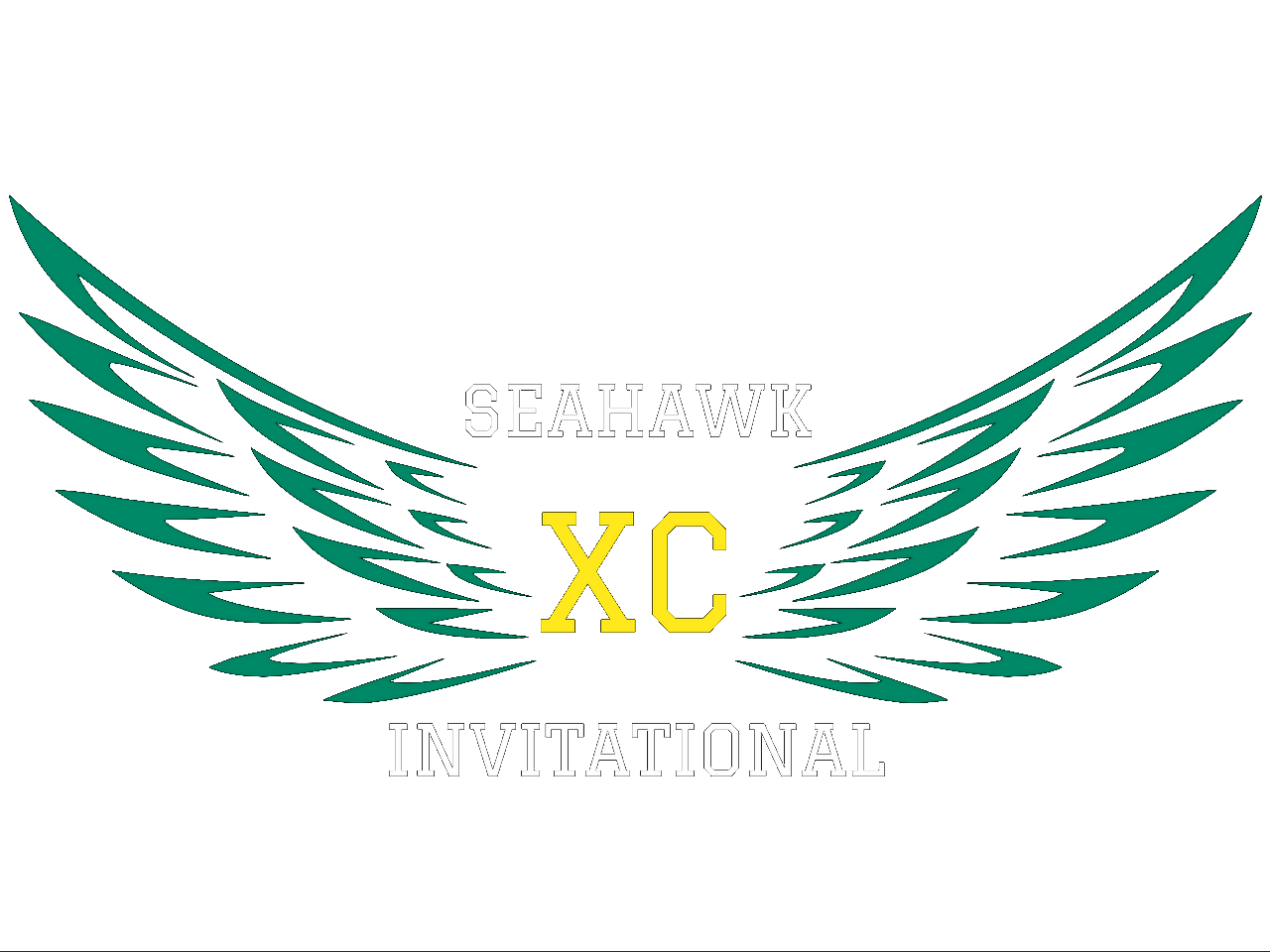 seahawk logo fin clear
