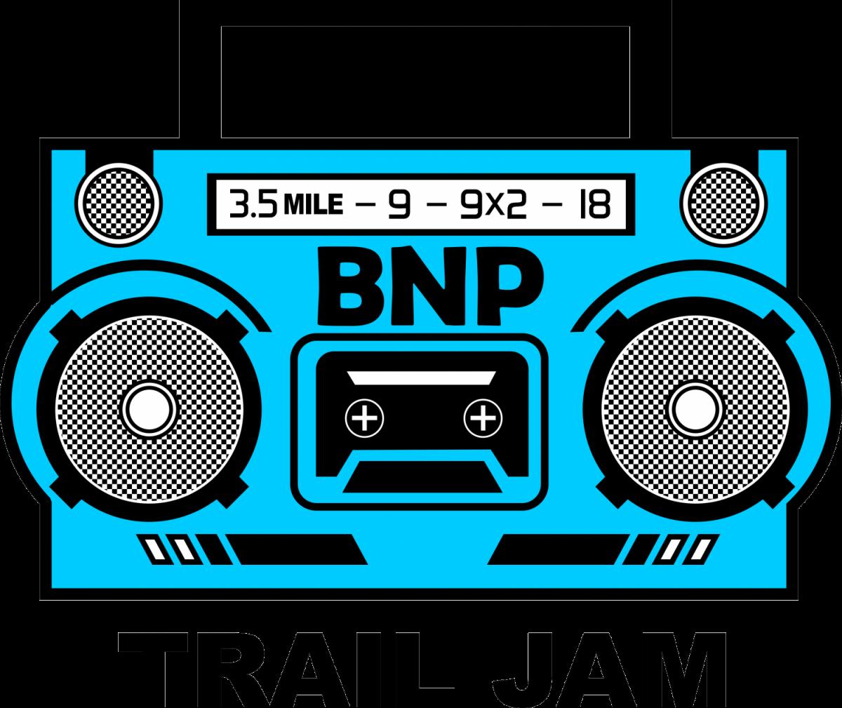 BNP Blue Color png (1)